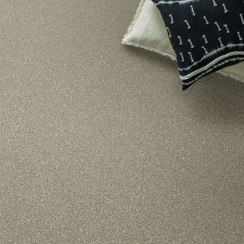 Anderson Tuftex STAINMASTER® PetProtect® Collection